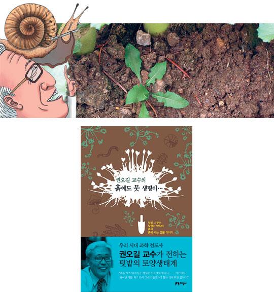 [책과 길] 살아 꿈틀대는 흙으로의 초대 기사의 사진