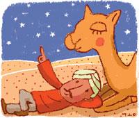 [코엘료 행복 연금술] 모래 자루와 아랍인 기사의 사진