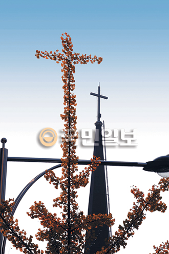 [묵상이 있는 풍경] 하늘을 품은 '은행나무 십자가' 기사의 사진