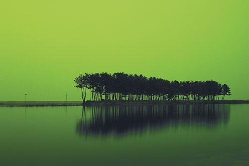 [그림이 있는 아침] 월천리 기사의 사진