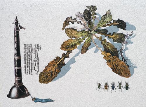 [그림이 있는 아침] 꽃다지와 태평소 기사의 사진