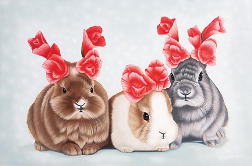 [그림이 있는 아침] 색다른 토끼 기사의 사진