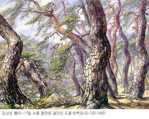 [그림이 있는 아침] 한국 소나무 기사의 사진