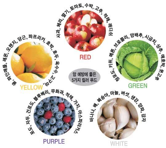 오색 과일·채소 먹으면 대장암 예방 기사의 사진