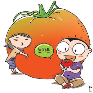 [이기수 기자의 건강쪽지] 토마토로 더위·피로 싹∼ 기사의 사진