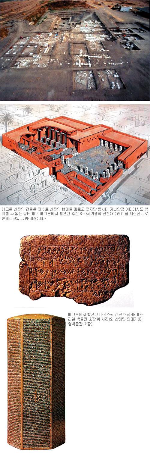 [고고학으로 읽는 성서-(1) 가나안 땅의 사람들] 블레셋 도시 ① 에그론(텔 미크네) 기사의 사진