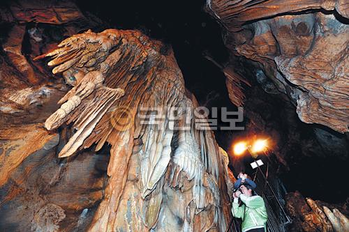 [포토 카페] 겨울여행의 별미, 동굴 기사의 사진