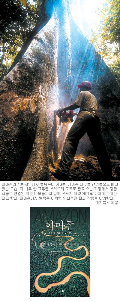 [책과 길] 인간의 탐욕으로 죽어가는 '슬픈 열대'… '아마존' 기사의 사진