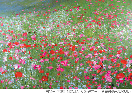 [그림이 있는 아침] 들판(Field) 기사의 사진