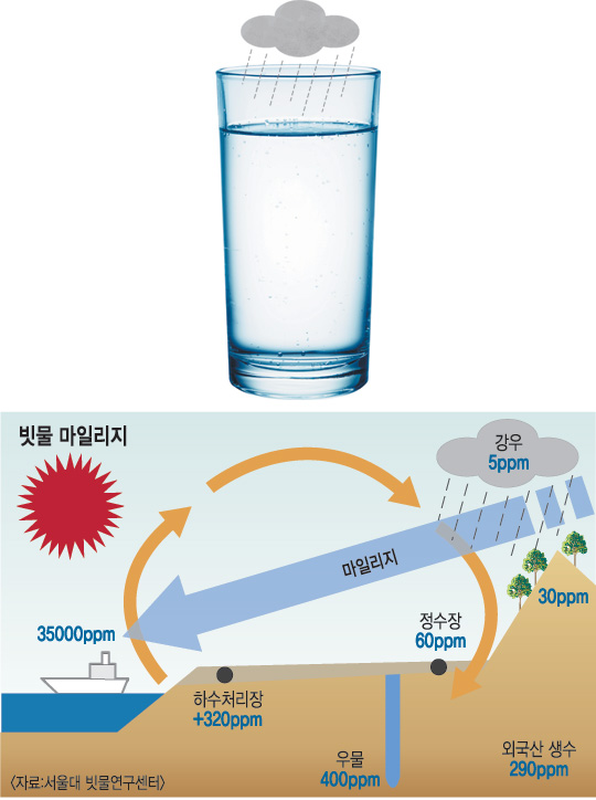 [빗물의 재발견] 깨끗하고 맛있다… 빗물을 마시자! 기사의 사진