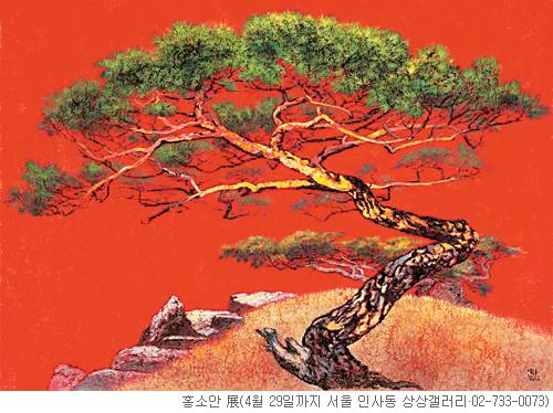 [그림이 있는 아침] 한국의 소나무 기사의 사진