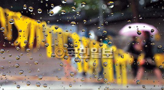 [포토 카페] 빗방울에 비친 노란 리본 물결 기사의 사진