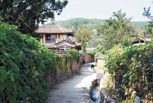 [톡톡! 한국의 문화유산] 담양 삼지내 마을 돌담길 기사의 사진