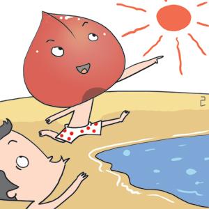 [이기수 기자의 건강쪽지] 여름철 다이어트용 과일 자두 기사의 사진