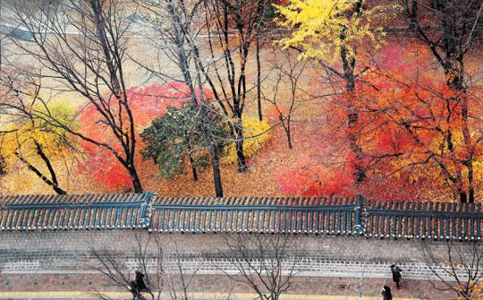 [포토 카페] 가을이 갑니다 기사의 사진