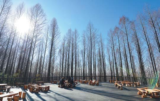 [그 숲길 다시 가보니-임항] 안산 자락길은 북한산과 이어질까 기사의 사진