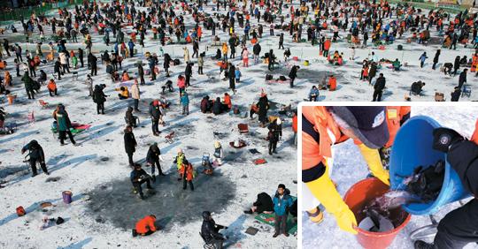 """""""없다"""" """"많다""""… 강원 겨울축제 물고기 싸움 기사의 사진"""