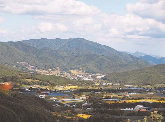 [살기 좋은 명품마을을 가다] (2) 경북 포항시 죽장면 상옥참느리마을 기사의 사진