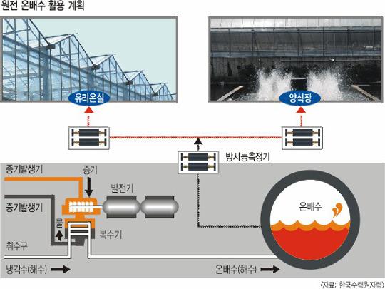 [단독-原電 우리에게 무엇인가] 원전서 나오는 온배수 열 활용  유리온실서 농작물 재배 검토 기사의 사진