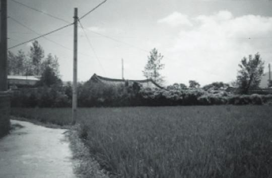 [역경의 열매] 김남주 (3) 고아원 시절의 추억 '강냉이죽·구더기 김치…' 기사의 사진