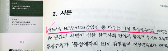 '에이즈 감염자 다수는 男 동성애자'… 동성애자 인권단체도 보고서에서 인정 기사의 사진