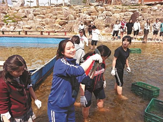 [살기 좋은 명품마을을 가다] (19) 강원 평창 계촌정보화마을 기사의 사진