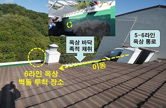 """""""캣맘 사건이라니, 벽돌 살인이라고 부릅시다!"""" 네티즌 일침 기사의 사진"""