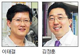 나노입자 이용한 망막질환 치료법 개발 기사의 사진