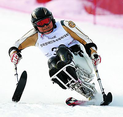 '평창 스키 리허설' 정상급 대거 출동… 올림픽 탐색전 기사의 사진