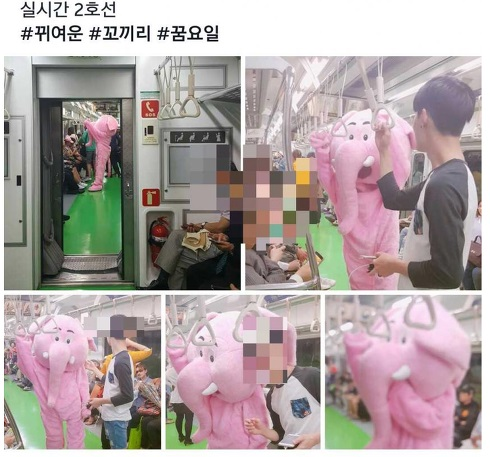 강남역 살인사건 현장에 나타난 핑크코끼리 '논란' 기사의 사진