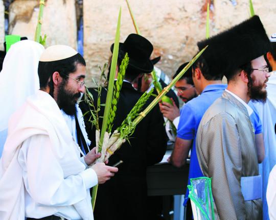 다비드투어 '이스라엘 초막절 체험'·'힐링 이스라엘 동행 캠프' 기사의 사진