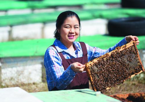 방송 기자에서 꿀 따는 귀농 청년으로 박새롬 집사 기사의 사진