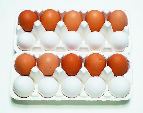 [색과 삶] 갈색 달걀, 흰색 달걀 기사의 사진