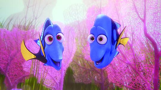 [책과 영성] 기억력 3초에 멍청?… 물고기는 억울하다 기사의 사진
