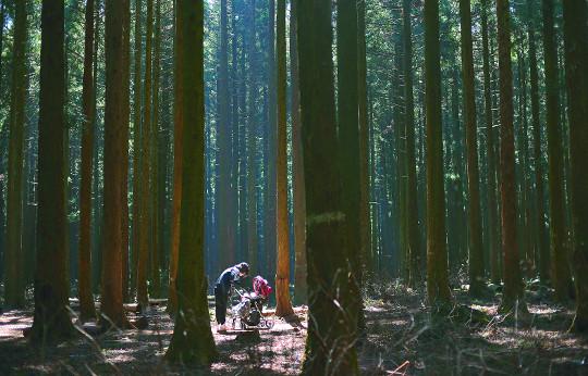 [포토 카페] 사려니숲 속의 모녀 기사의 사진