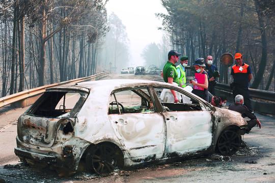 포르투갈 대형 산불 계속 번져… 최소 62명 사망 기사의 사진