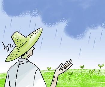 [한마당-김준동] 태풍과 장마 기사의 사진