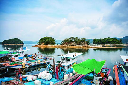 장구·징·북·꽹과리…'사물놀이 섬'에 흥겨운 바다 기사의 사진