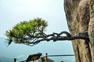 기기묘묘한 바위 전시장… '작은 금강산' 기사의 사진