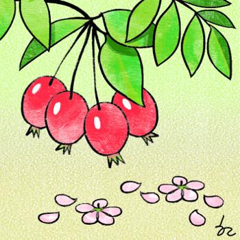 [겨자씨] 버린 것도 열매입니다 기사의 사진