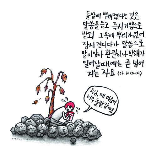 [그림 묵상] 돌밭 같은 내 마음 기사의 사진