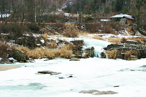 [색과 삶] 겨울 색 기사의 사진
