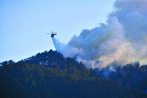 삼척 산불 이틀째 강풍 타고 번져… 진화 총력전 기사의 사진