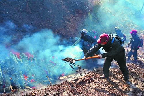 삼척 산불 사흘째… 산림 65㏊ 잿더미 기사의 사진