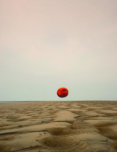 [신현림의 내 곁에 산책] 고난을 뚫고 가는 빨간 사과 기사의 사진