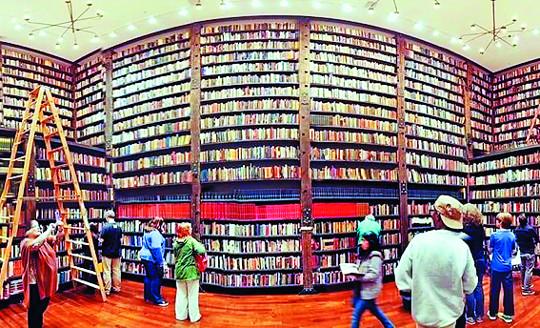 [미술산책] 폐허에 만든 예술도서관 기사의 사진