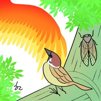 [겨자씨] 매미와 참새의 생각 기사의 사진