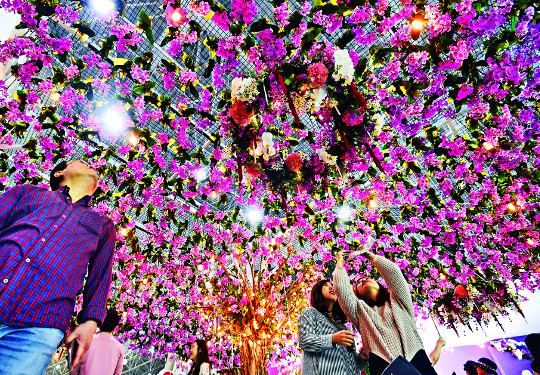 [포토 카페] 꽃향기 가득,  봄 내음 가득 기사의 사진