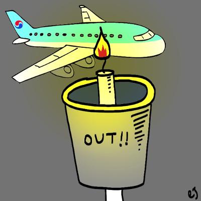 [비즈카페] 조직화하는 '을의 반란'… 대한항공 '직원연대' 뜬다 기사의 사진