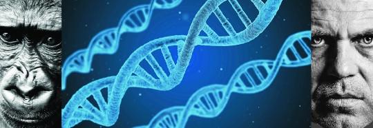 근거 잃는 진화론… 美·스위스 과학자, 진화론 뒤집는 연구결과 발표 기사의 사진